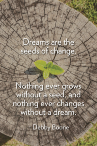 Dreams are the seeds of change. Nothing ever grows without a seed, and nothing ever changes without a dream. ~Debby Boone
